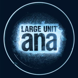Large Unit - ana